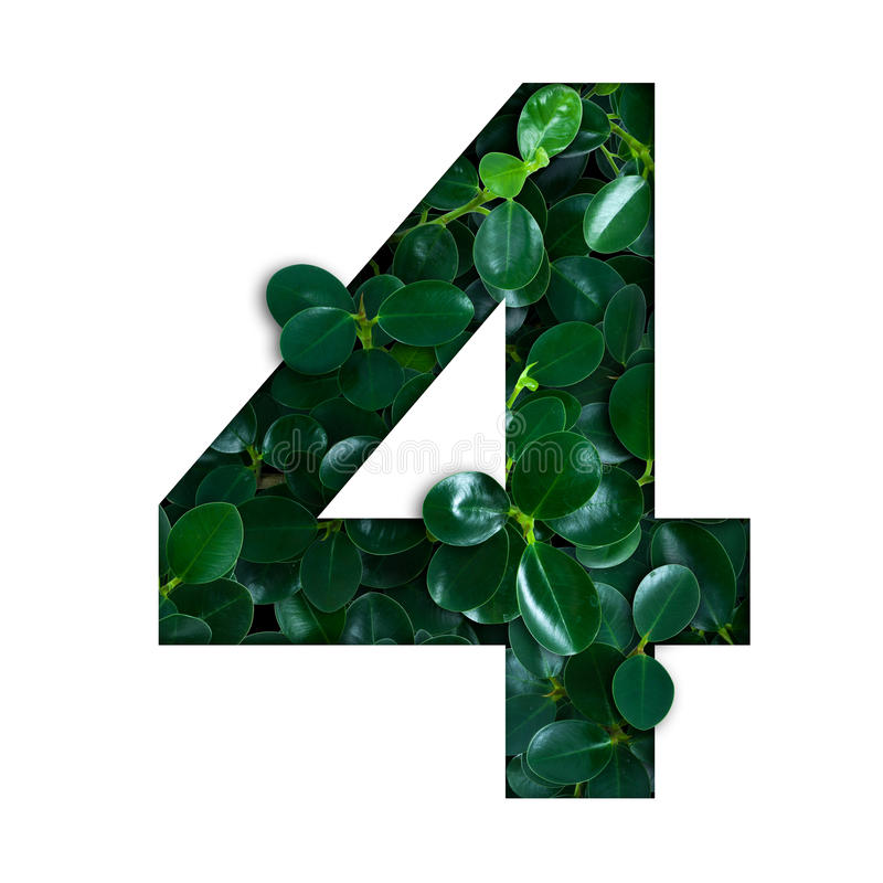 Nature concept alphabet of green leaves in number four. Shape stock photo