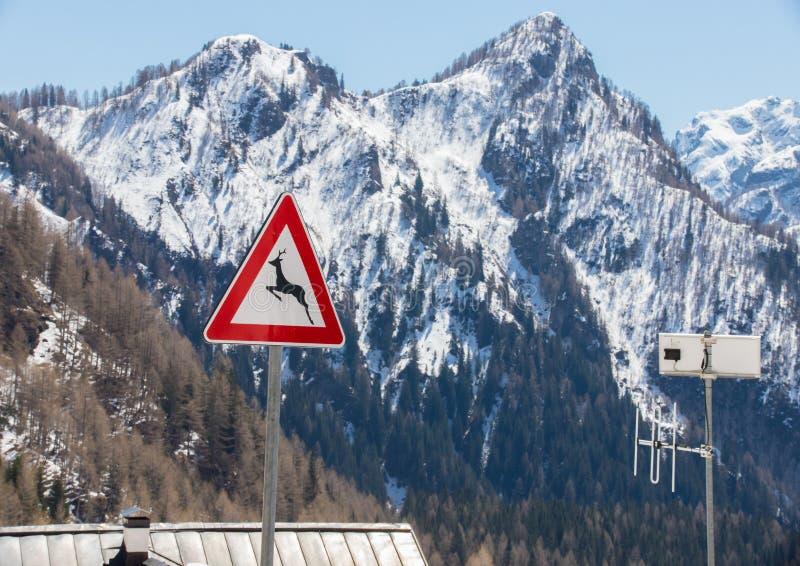 """Nature de dolomites Un paysage des montagnes et des collines - un signe """"croisement de cerfs communs """" photos stock"""