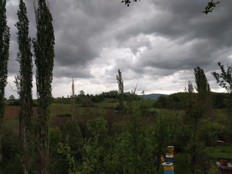 Nature de jour pluvieux image stock