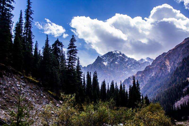 Nature de Kirgiz de région de Kol d'aile du nez image stock