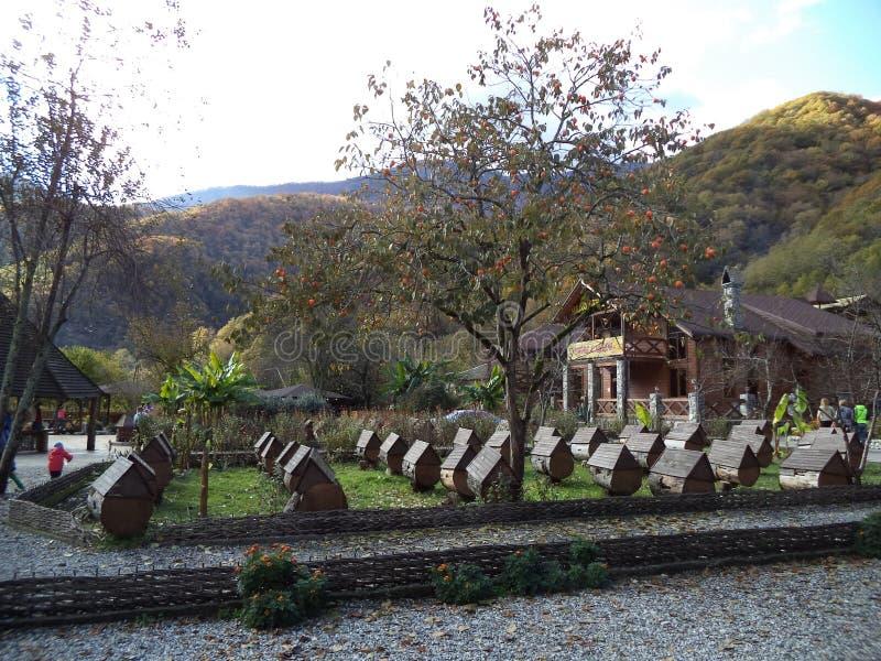 Nature de l'Abkhazie E images stock
