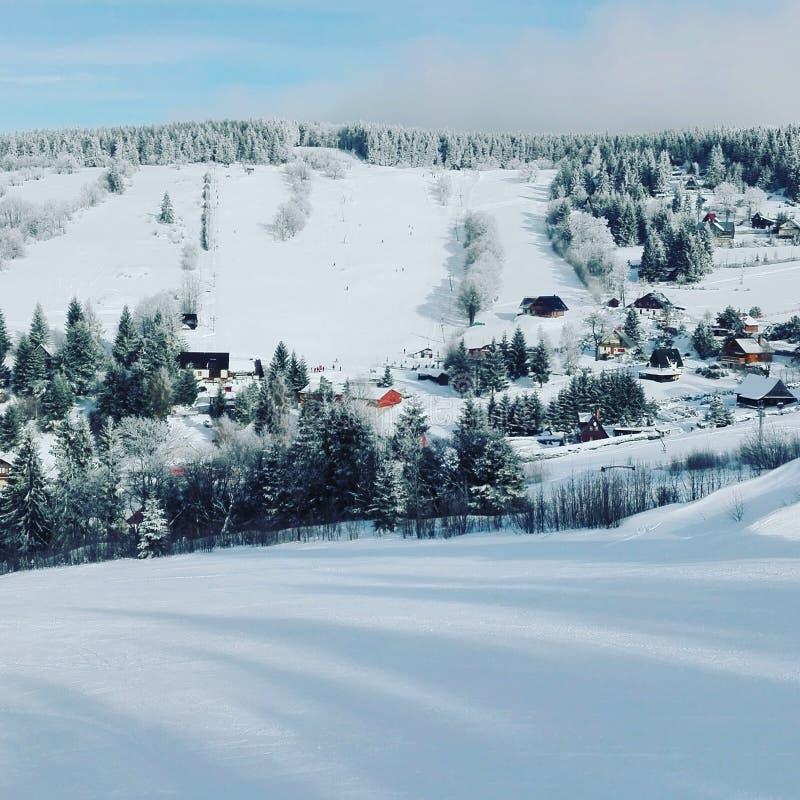 Nature de l'hiver images stock