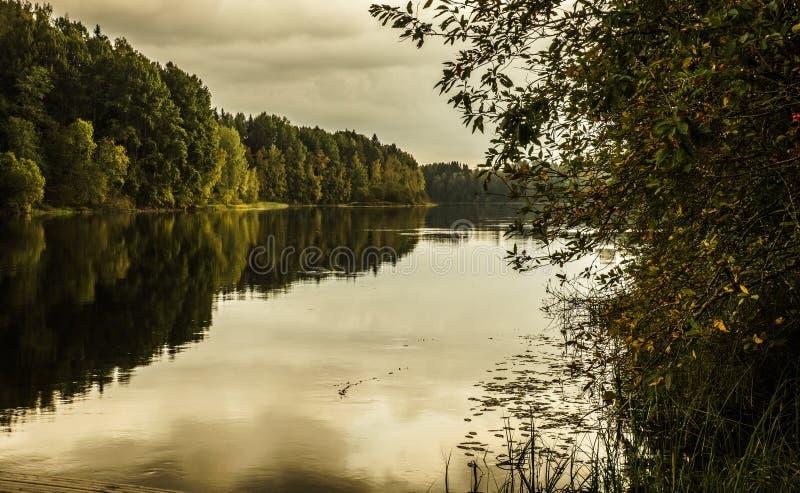 Download Nature de la Finlande photo stock. Image du échelle, wooden - 45354112