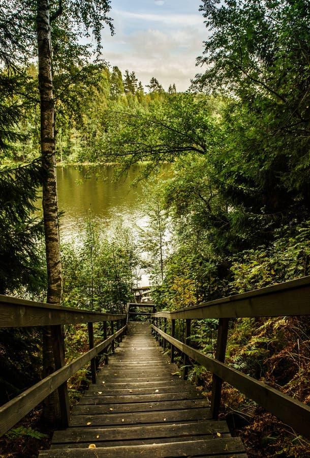 Download Nature de la Finlande image stock. Image du île, nature - 45354345