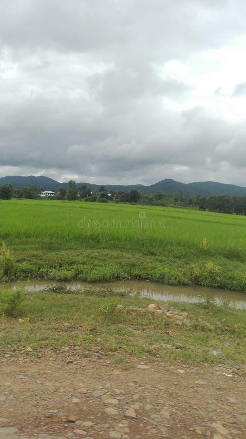 Nature de Myanmar photos stock