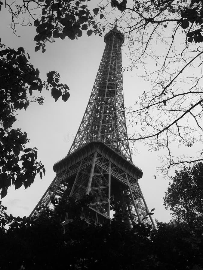 Nature de Tour Eiffel? ! photos libres de droits