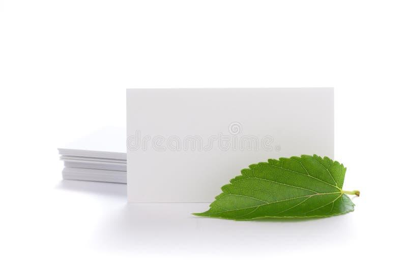 nature de vert d'environnement de concept images stock