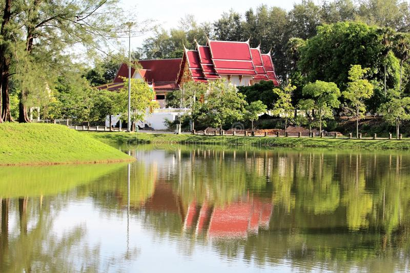 Nature des fleurs et des jardins de la Thaïlande images stock
