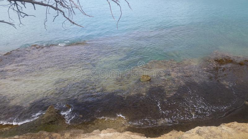 Nature doing her jobs sea weeds covered rocks royalty free stock photo