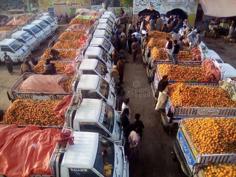 Nature du Pendjab Pakistan photographie stock libre de droits