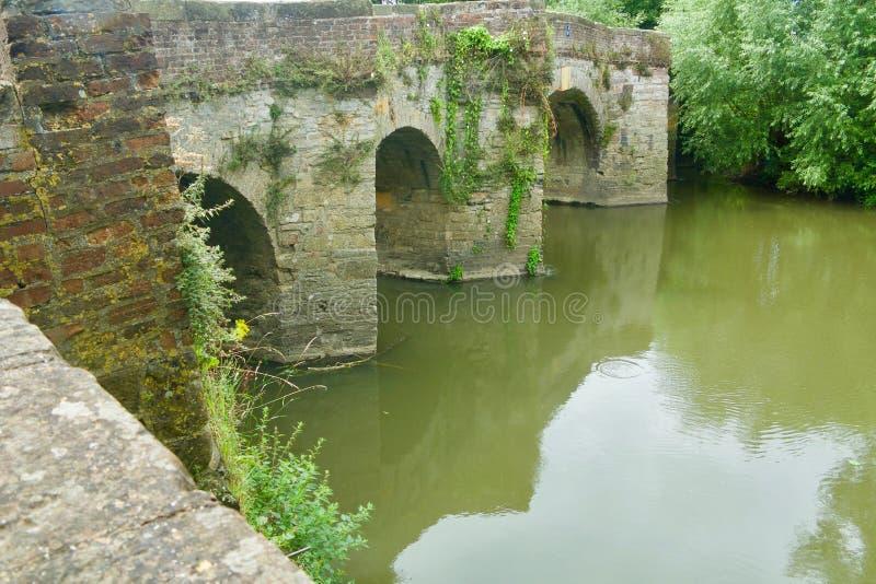 Nature du pont photo stock
