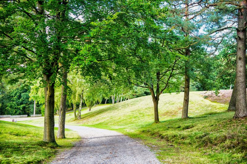 Nature, environment and ecology concept. Footpath among green trees, ecology. Path in spring or summer forest, nature. Road in woo royalty free stock photo