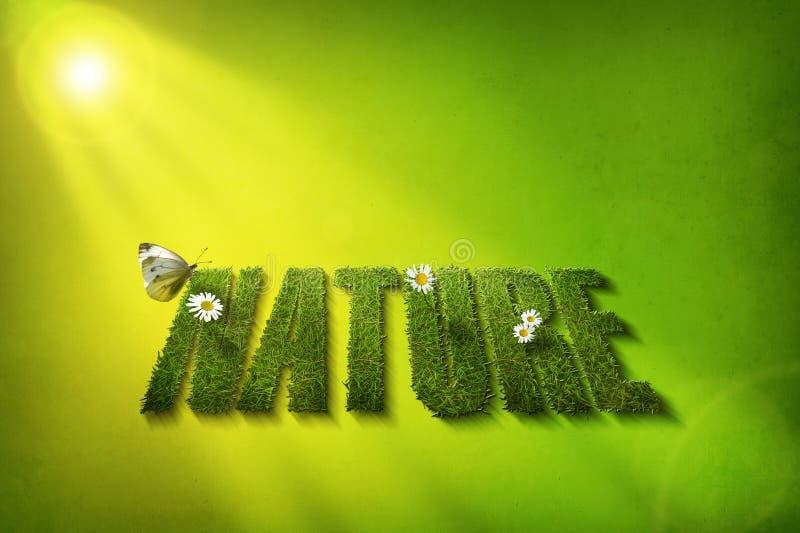 Nature font vector illustration