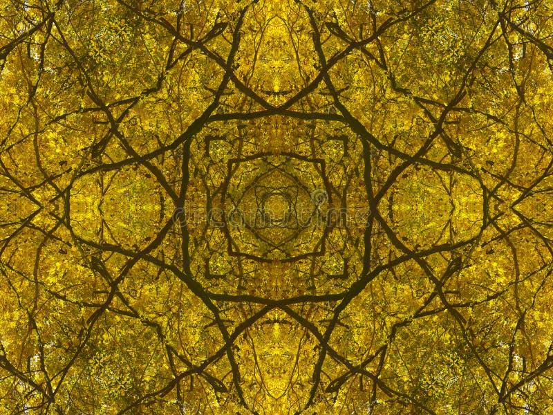 Nature géométrique abstraite de branches et de feuilles d'automne photo libre de droits