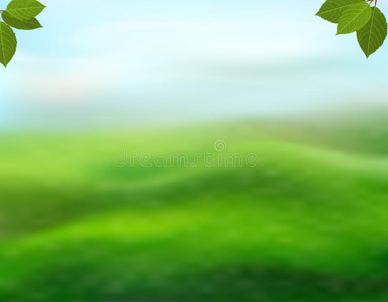 Nature green background with fresh leaves on a blurred background of grass and sky. View with copy space add text. Vector stock illustration