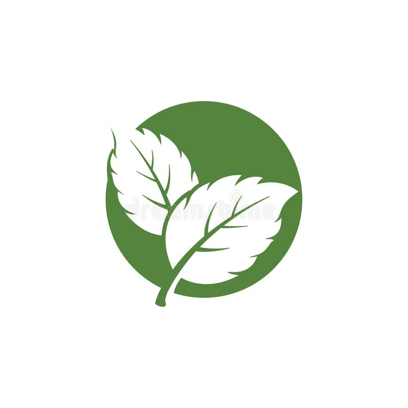 nature green leaf element vector icon. green leaves vector symbol vector illustration
