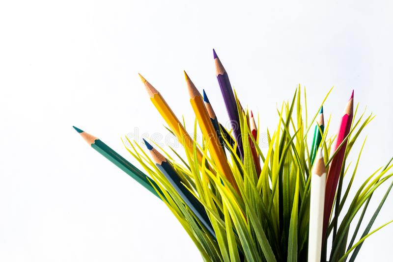 Nature Growth - Still Life Conceptual. Colored Pencils coming out of grass. Shallow depth of field, selective focusing stock images