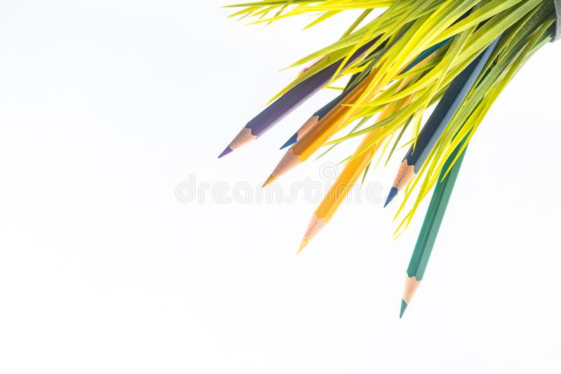 Nature Growth - Still Life Conceptual. Colored Pencils coming out of grass. Shallow depth of field, selective focusing stock photos