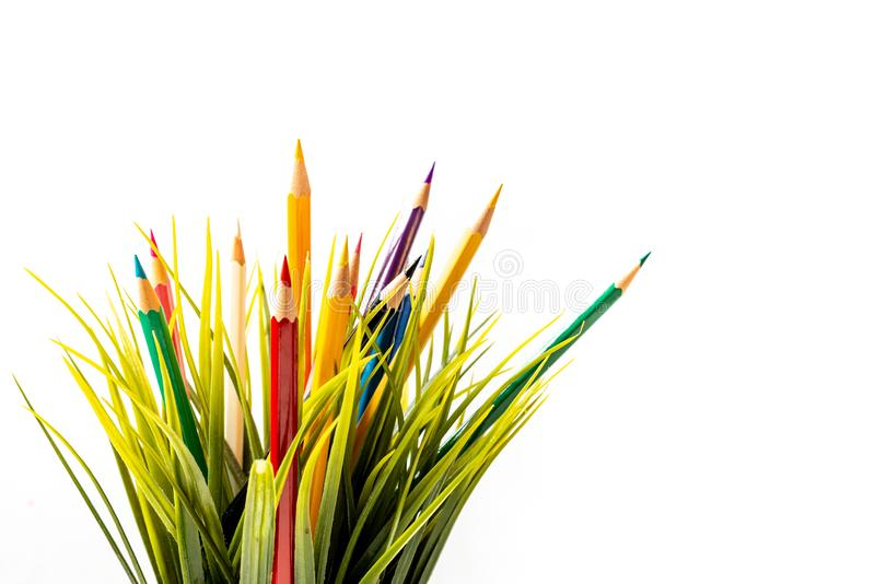 Nature Growth - Still Life Conceptual. Colored Pencils coming out of grass. Shallow depth of field, selective focusing royalty free stock images