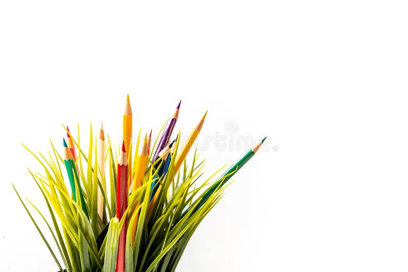 Nature Growth - Still Life Conceptual. Colored Pencils coming out of grass. Shallow depth of field, selective focusing royalty free stock photography