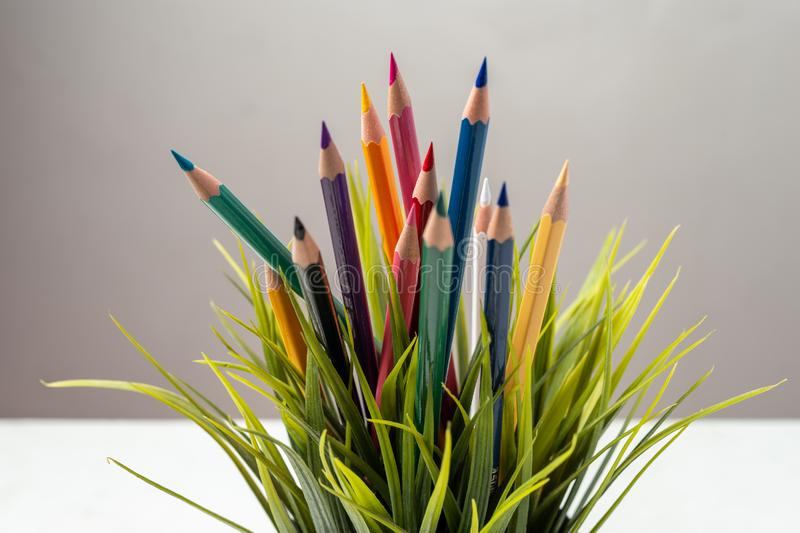 Nature Growth - Still Life Conceptual. Colored Pencils coming out of grass. Shallow depth of field, selective focusing stock image