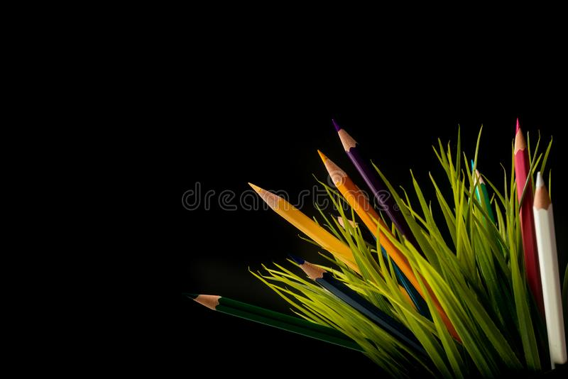 Nature Growth - Still Life Conceptual - Colored Pencils coming out of grass. Shallow depth of field, selective focusing, black. Background stock photos
