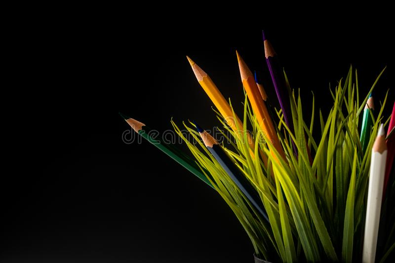 Nature Growth - Still Life Conceptual. Colored Pencils coming out of grass. Shallow depth of field, selective focusing, black background stock images