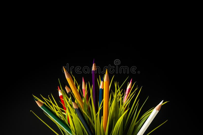 Nature Growth - Still Life Conceptual. Colored Pencils coming out of grass. Shallow depth of field, selective focusing, black background stock image