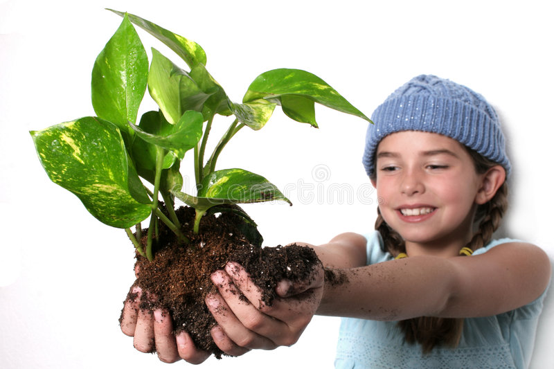 Nature in Hand royalty free stock images