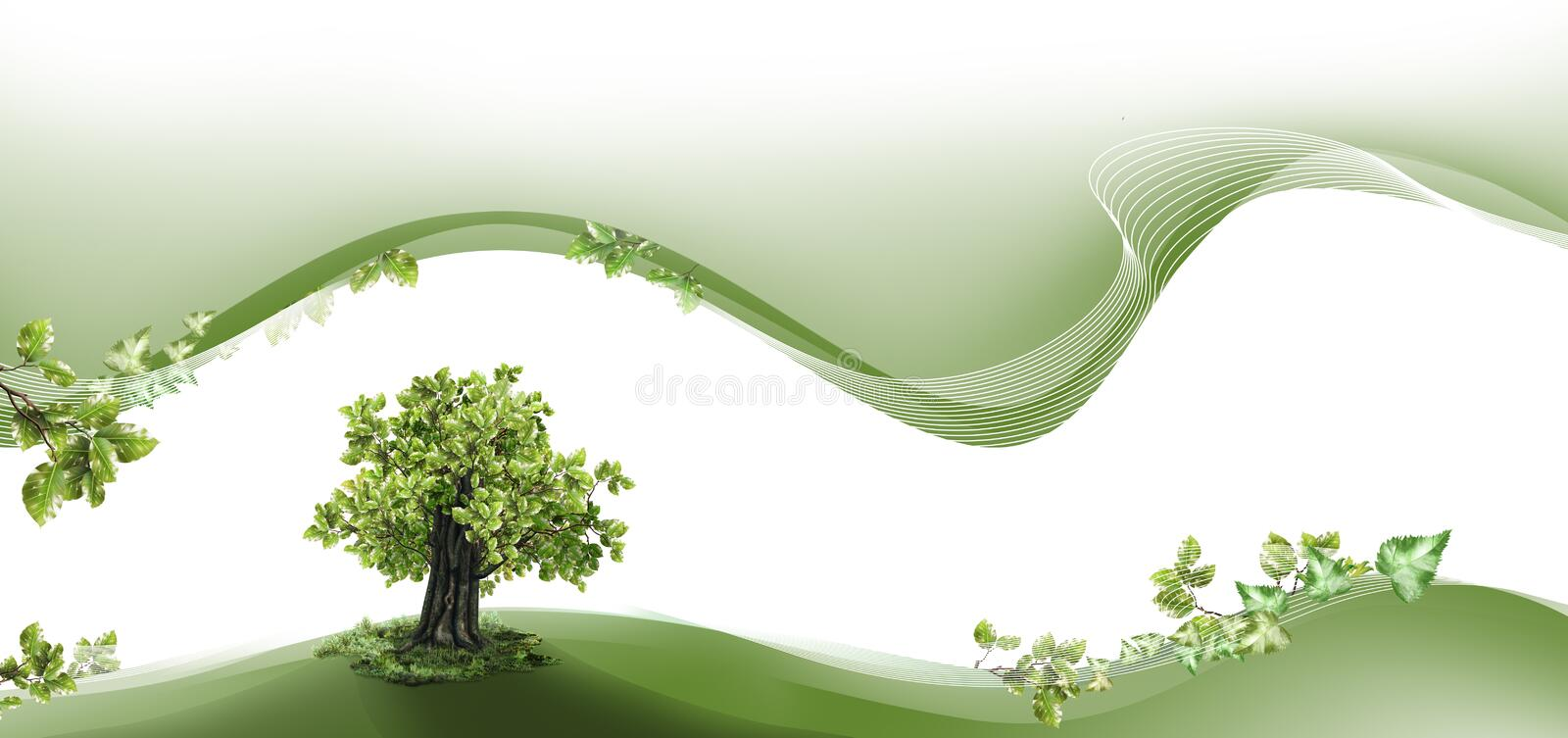Nature Header And Footer Stock Photo