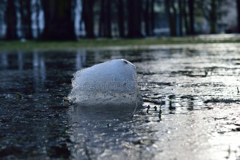 A piece of ice on the water in the park. Nature ice piece park water winter poland warsaw royalty free stock photo
