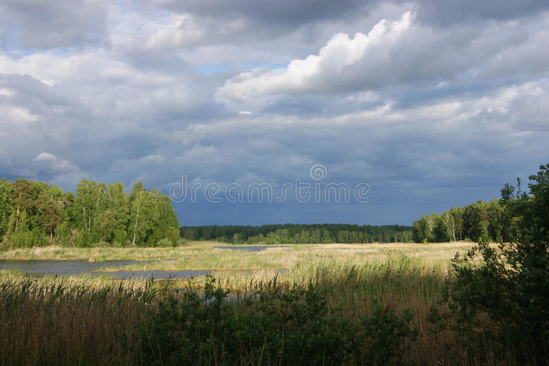 Nature intacte image stock