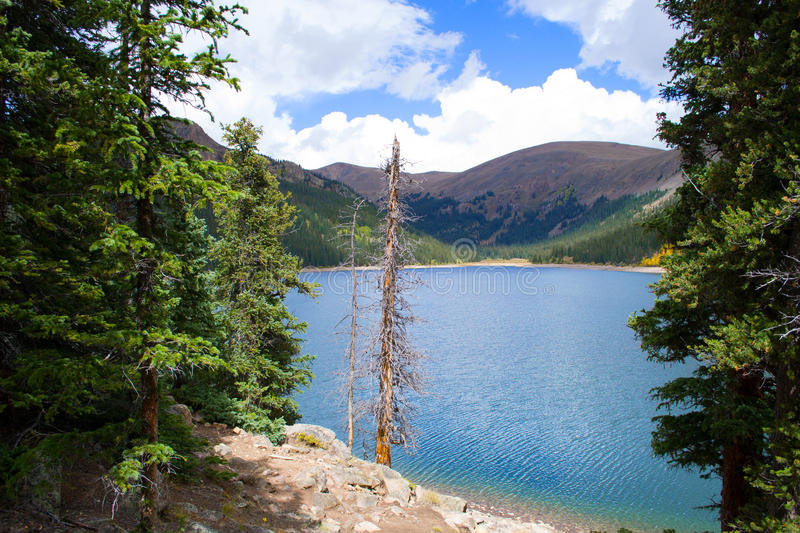Nature. Of the Jefferson Lake Recreation Area, Colorado stock images