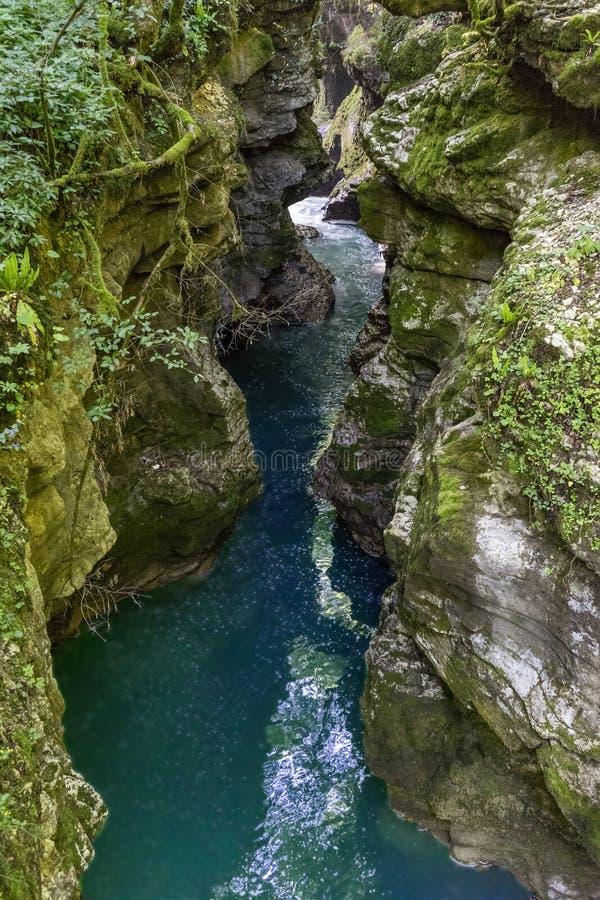 nature La Géorgie, canyon de Martvili, peut 2017 image libre de droits