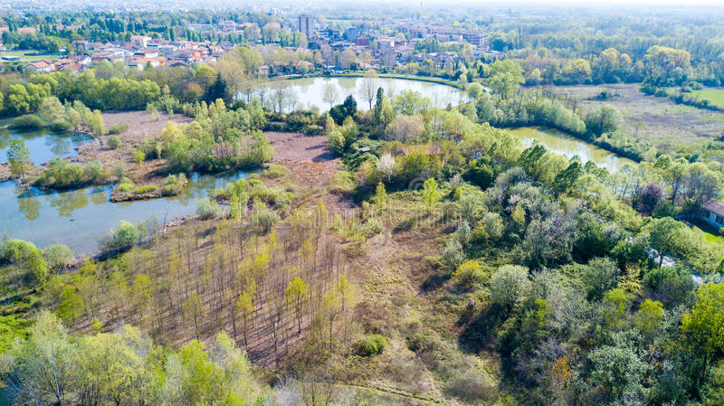 Nature and landscape: Aerial view of a forest and lakes, green and trees in a wild landscape. Groane Park, Mombello Laghettone, Limbiate, Milano, Italy royalty free stock photo
