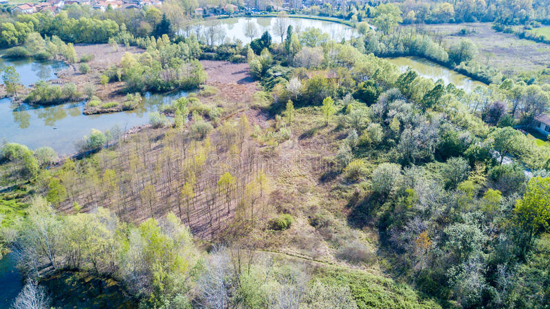 Nature and landscape: Aerial view of a forest and lakes. Green and trees in a wilderness landscape stock images