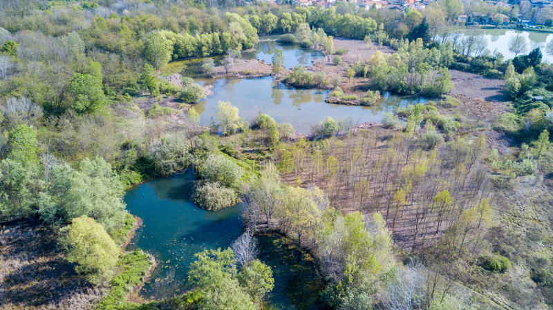 Nature and landscape: Aerial view of a forest and lakes. Green and trees in a wilderness landscape stock photo