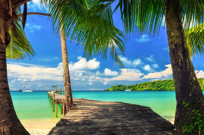 Nature landscape: Amazing sandy tropical beach with silhouette coconut palm tree in crystal clear sea and scenery wooden bridge ou. T of the horizon / Palm and royalty free stock images
