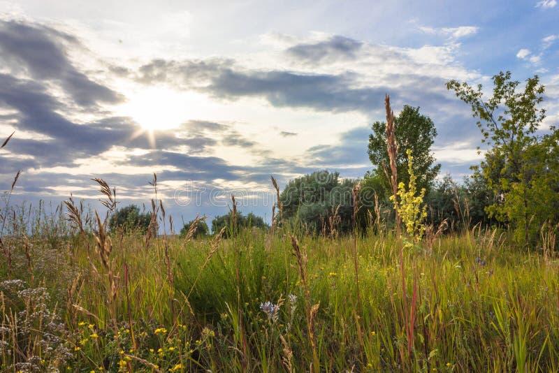 Nature landscape stock photo