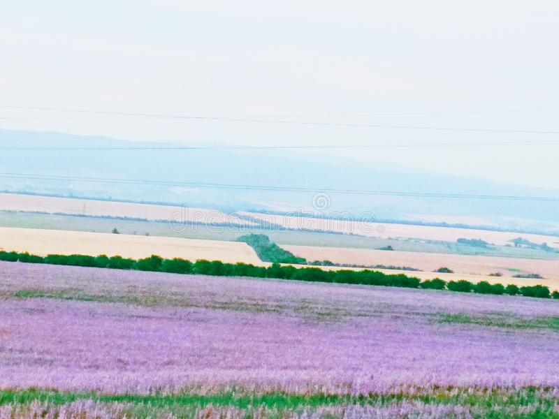 Nature and landscape. Beautiful, summer, love royalty free stock images