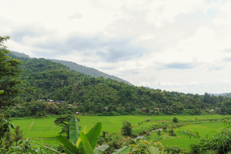 Download Nature Landscape And Fields Stock Image - Image: 83708355