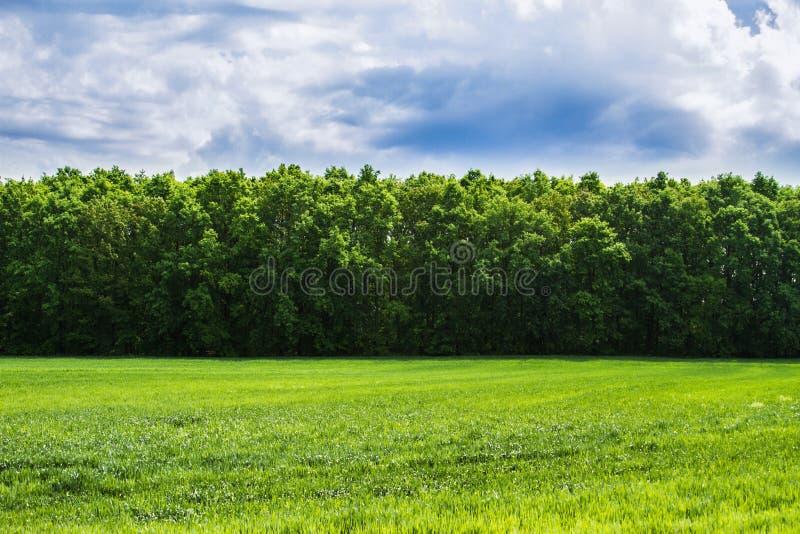 Download Nature, landscape stock photo. Image of horizon, ecology - 32066180