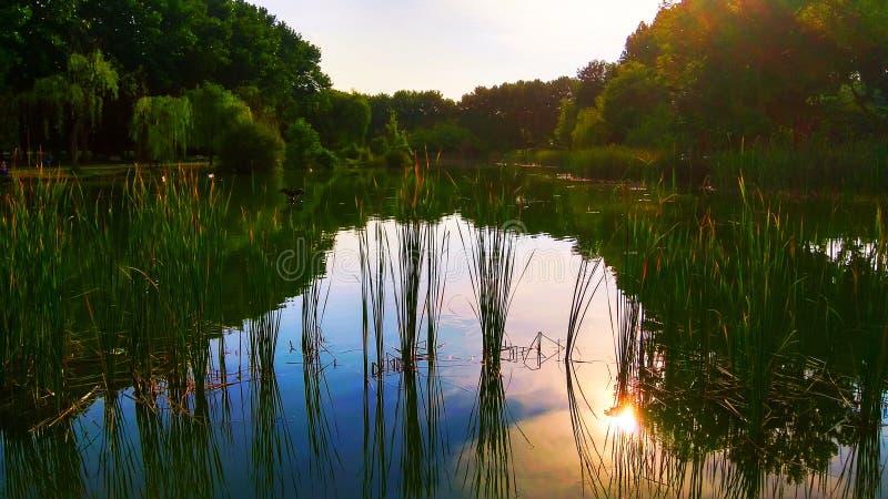 Nature landscape, lake. Nature landscape lake background stock photo