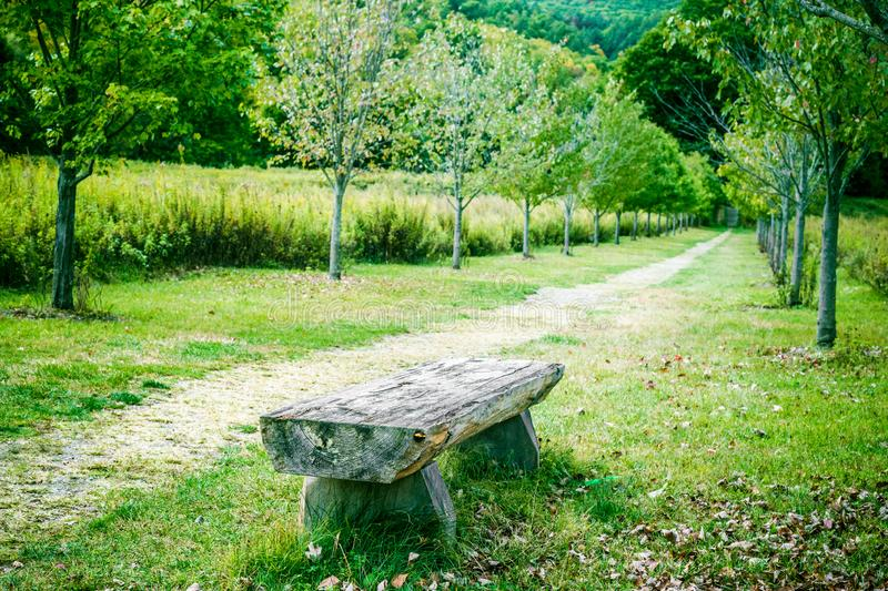 Nature landscape with Relaxing bench and path in park. View of beautiful Nature landscape with Relaxing bench and path in park stock photography