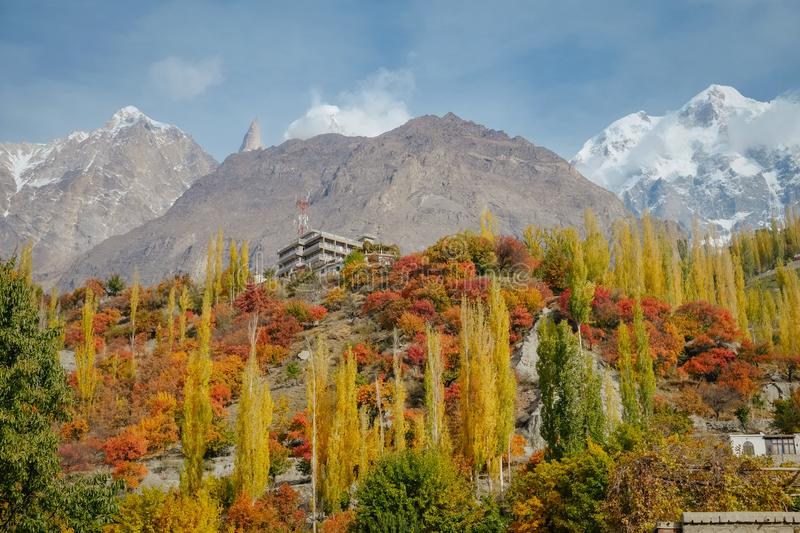 Colorful foliage forest trees in autumn season and snow capped Karakoram mountain range in the background. royalty free stock photography