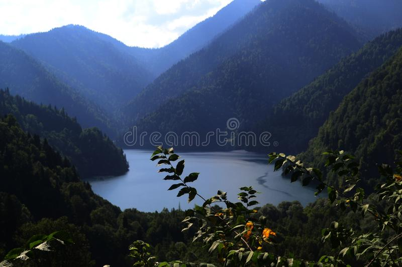 Nature landscape. View of the lake Ritsa in the Caucasian mountains. Abkhazia. Tree, trees, forest, flora, natural, background, outdoor, famous, place stock photography