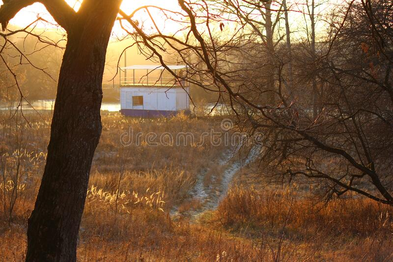 Nature in late autumn at sunset. Trail through the fieldn royalty free stock images