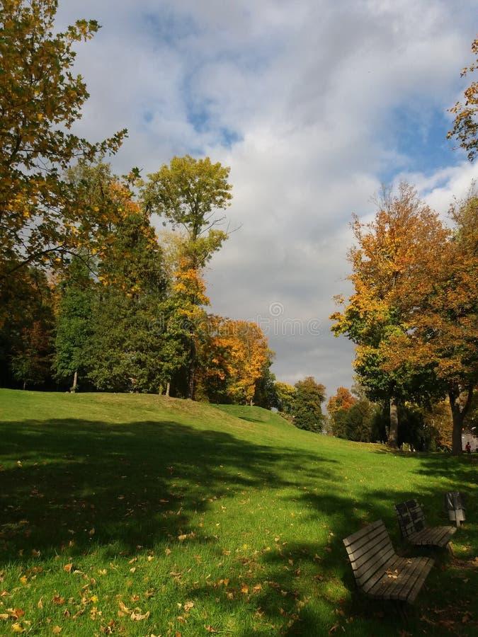 Nature, Leaf, Sky, Autumn Free Public Domain Cc0 Image