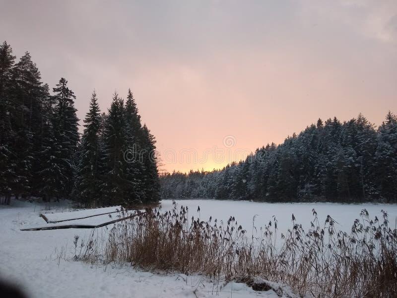 Nature letton images libres de droits