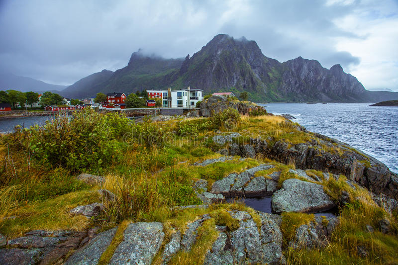 Nature Lofoten in northern Norway. stock images
